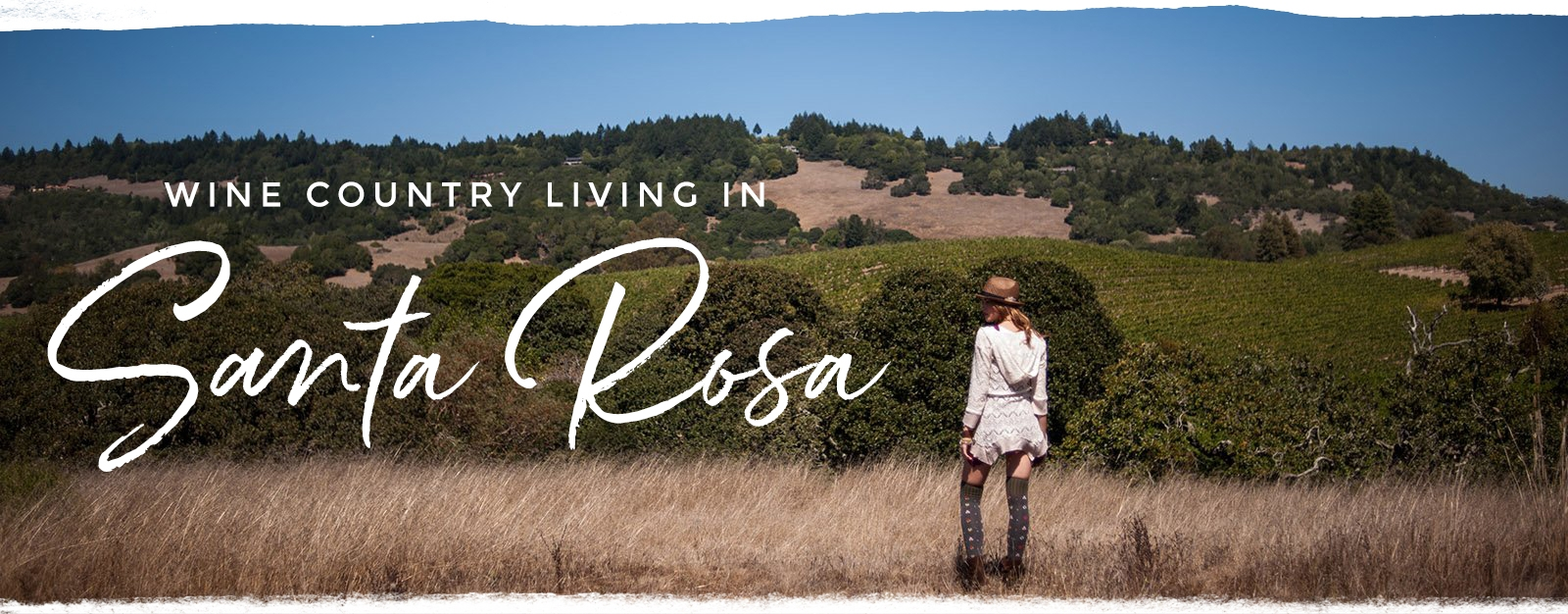 wine-country-living-santa-rosa